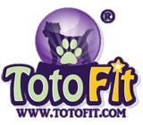 TOTO-FIT
